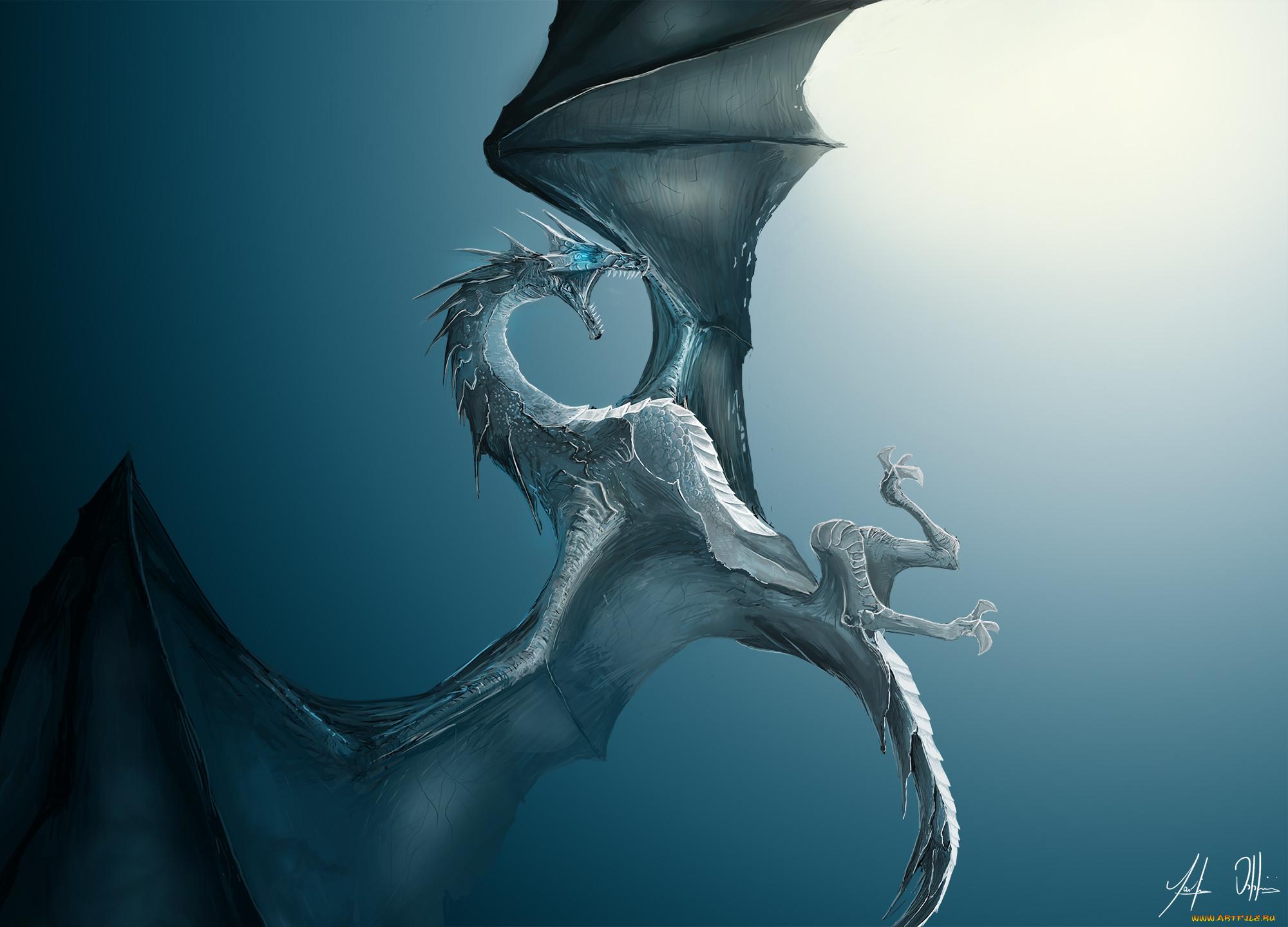 картинки крылья драконов ребенок вырос